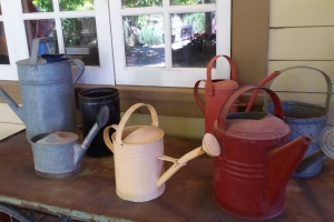 Preston watering cans