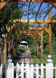 Preston Winery arbor