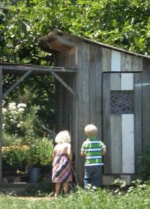 Preston winery chickens and kids