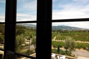 Coppola view to St Helena