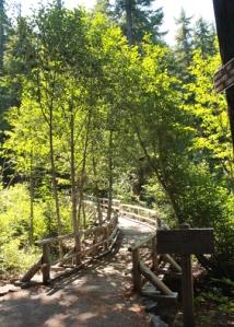 Salt Creek paths