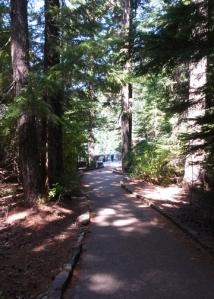 Salt Creek path