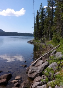 Waldo Lake shoreline