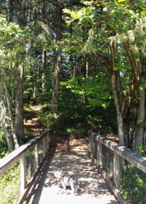 Bridge at Baker Bay, Oregon
