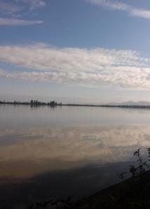 Fern Ridge Reservoir Lake