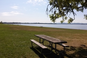 Fern Ridge Richardson picnic
