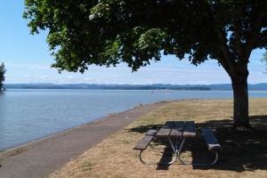 Orchard Pt picnic