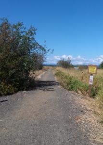 Fern Ridge Wildlife