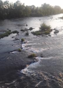 Willamette River Eugene