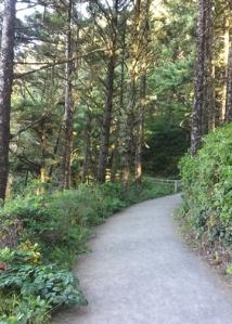 Heceta Head trail