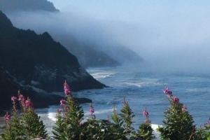 Heceta trail ocean view