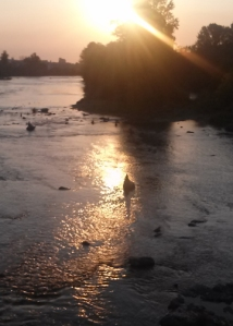 Sunset on the Willamette River
