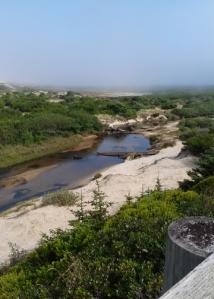Sutton Creek overlook