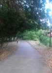 Path on Millrace Eugene Oregon