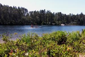Honeyman Lake swimming