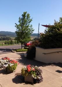 King Estate Winery steps