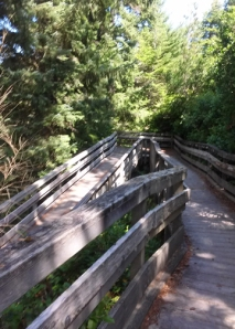 Oregon Dune boardwalk