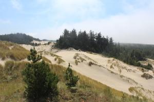 Oregon Dunes day use