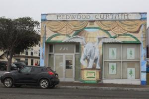 Redwood Curtain Eureka