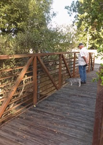 bridge near Rohnert Park