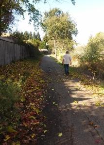 Laguna neighborhood trail