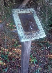arboretum lichen label