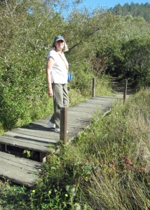 Marsh Trail boardwalk