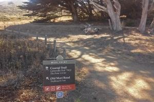 Pt Mori trails