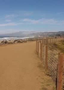 Sea wall trail
