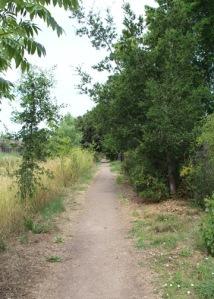 Laguna trail from Ladybug