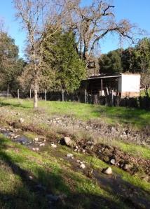 Hunter Ln Creek