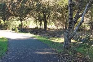 Path turn