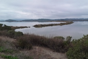 Saltwater view