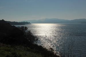 Tomales Bay view south