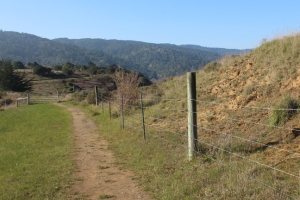 Trail west from Giacomini
