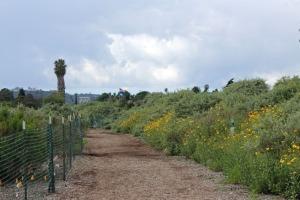 Bird refuge path