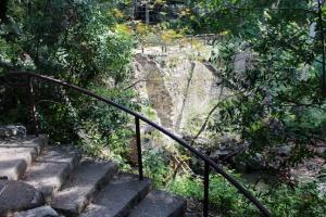 Botanic dam