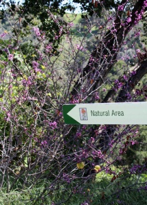 Botanic Natural Area