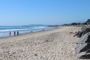 Carpenteria beach north