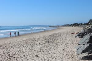 Carpenteria beach north