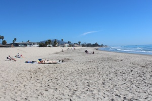 Carpenteria beach south