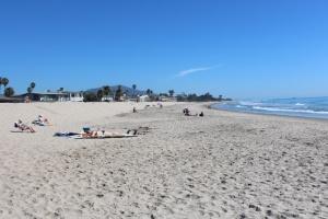 Carpenteria beach south