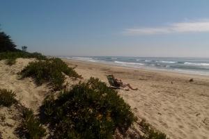 Carpenteria State Beach