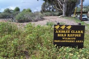 Clark Bird Refuge