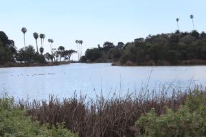 Clark Bird Refuge Lake