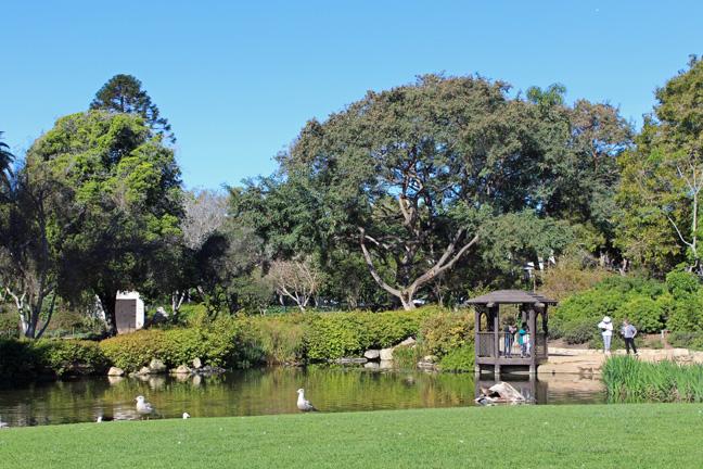 Walking santa barbara alice gardens and downtown for Koi pool santa