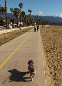 Santa Barabra beach path