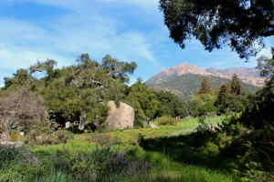 SB Botanic Garden