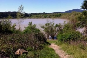 Muddy Lake Benoist