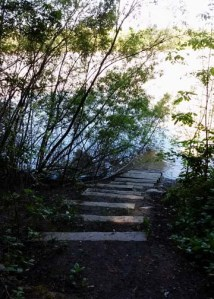 Steps to Lake Benoist